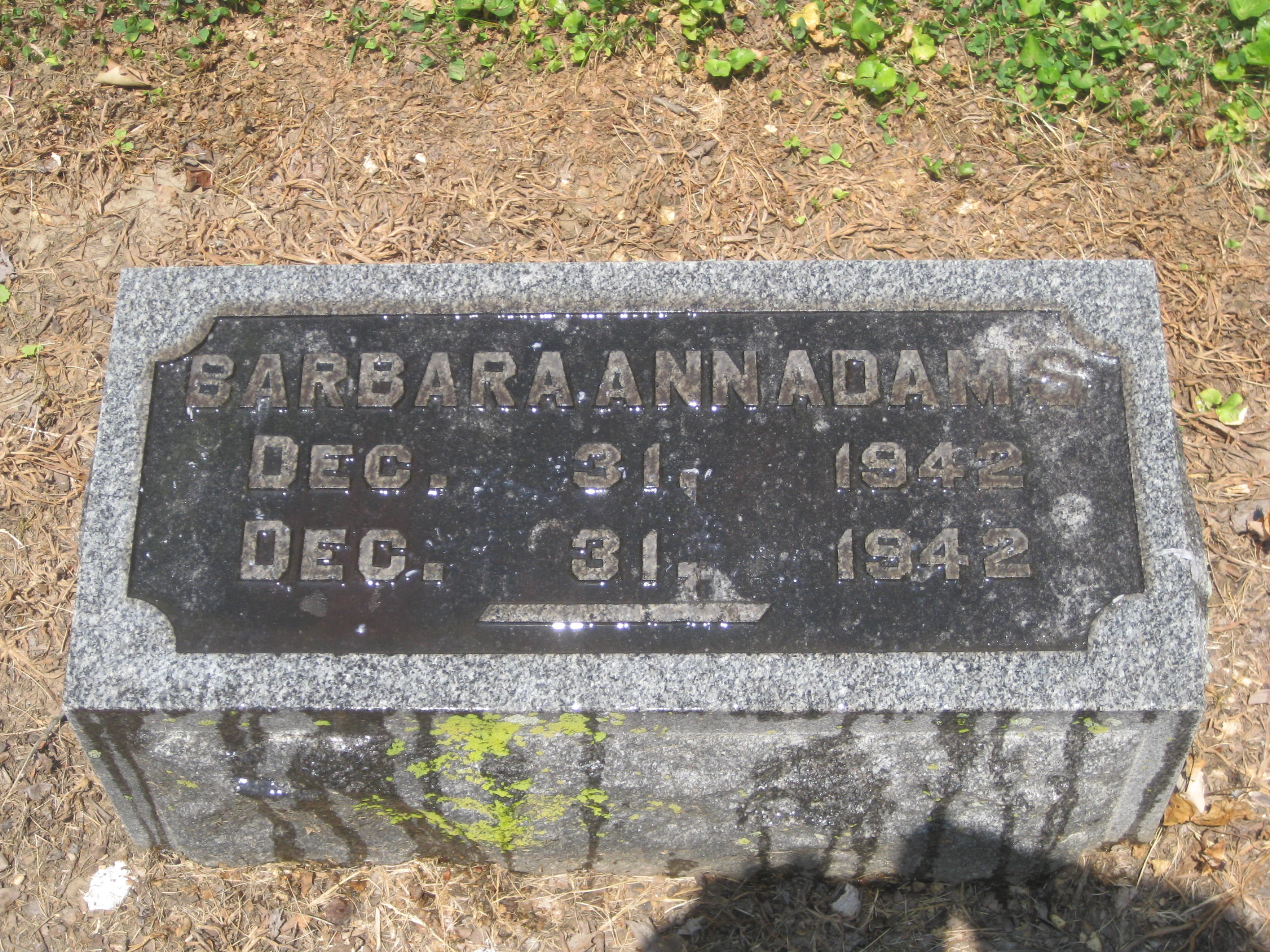 Barbara Ann Adams