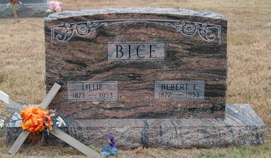 Albert E Bice