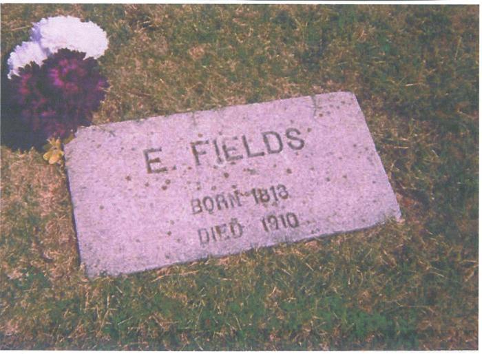Elias Fields
