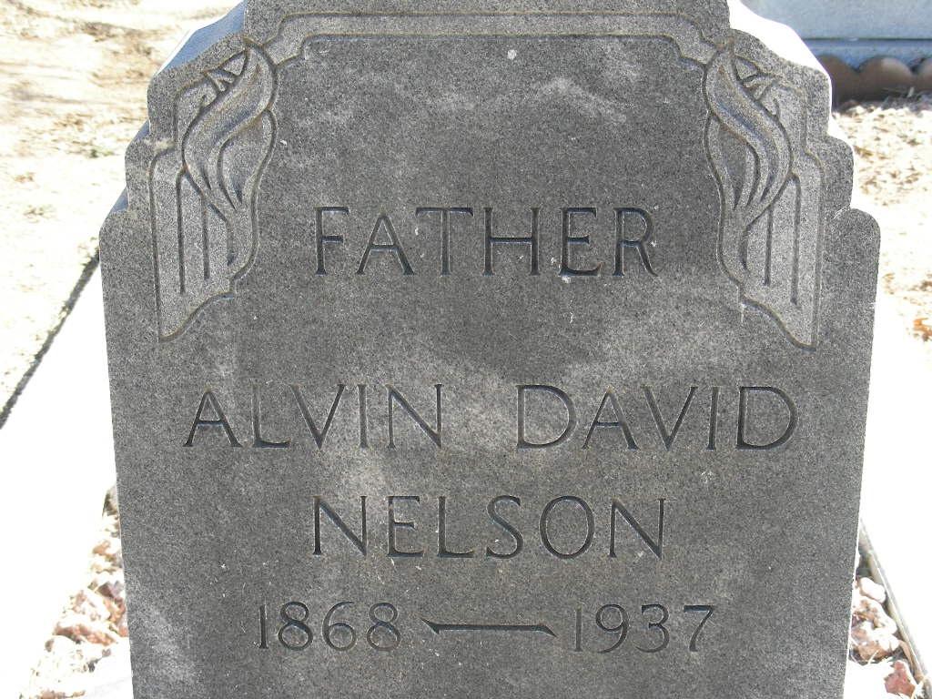 David Bailey Nelson