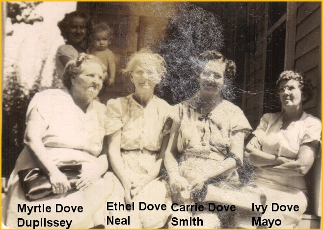 Dover Dayton Dove