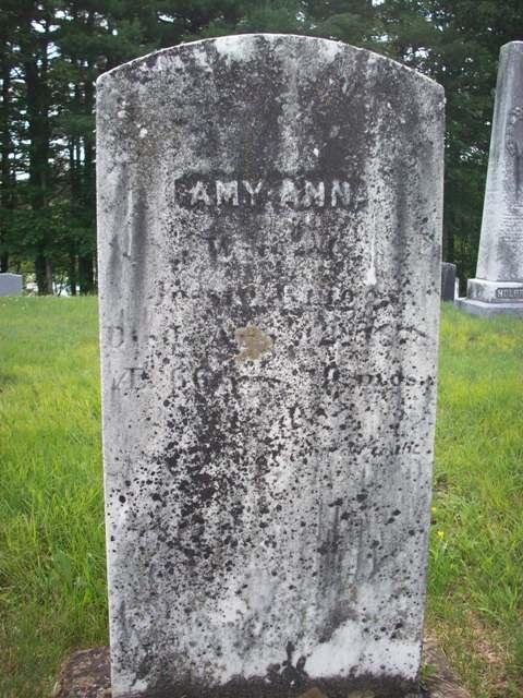 Ann Amy