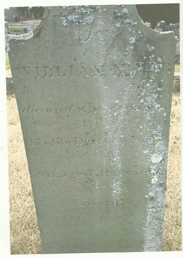 Mary Elizabeth Carey