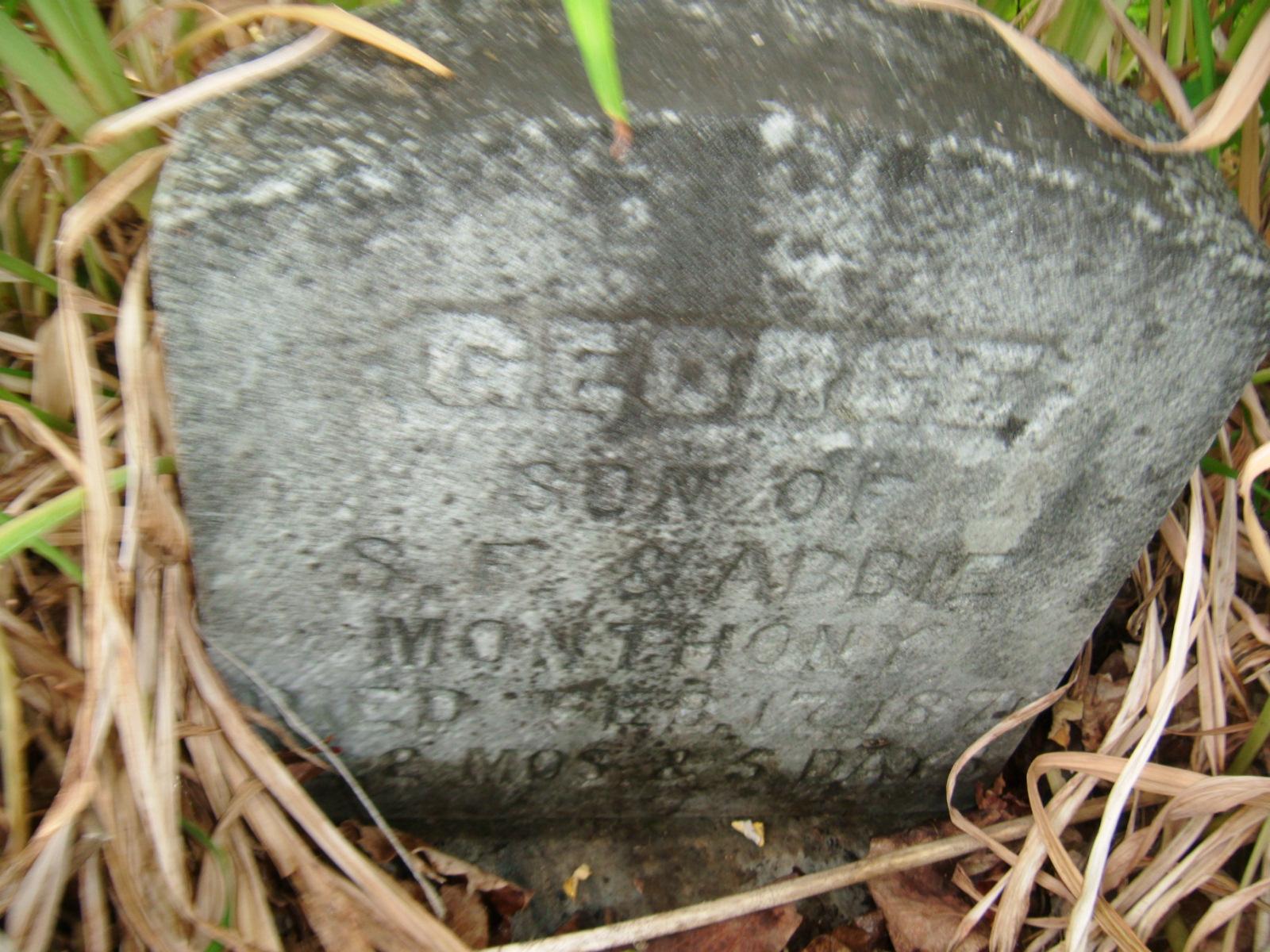 George Lynn Montena