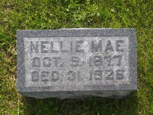 Nellie Fenton