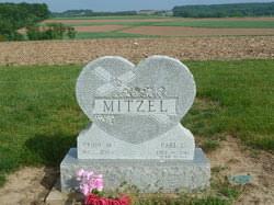 Earl Metzel