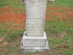 David H Roberts