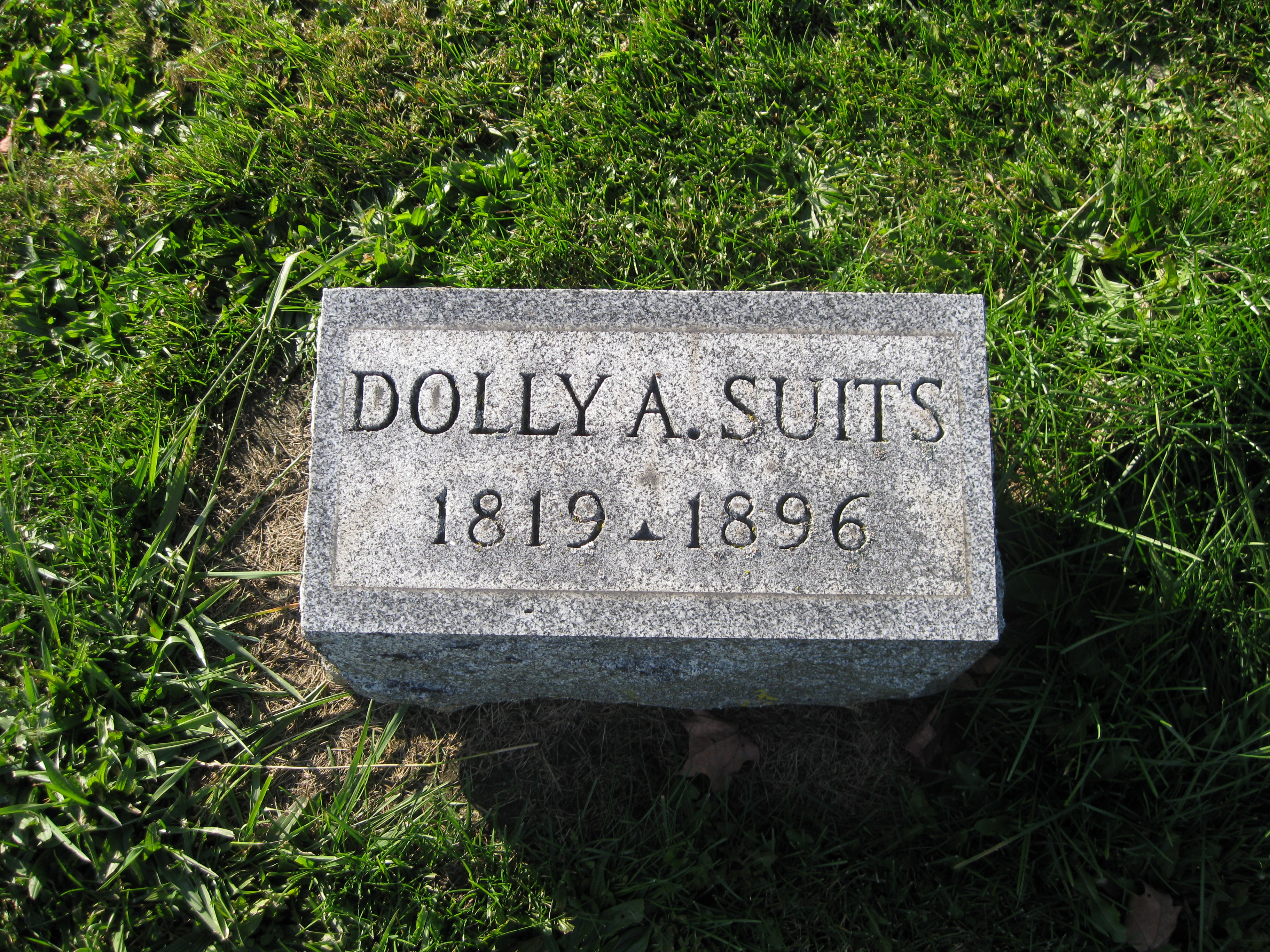 Dolly Suits