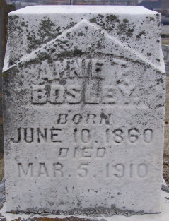 James Henry Bosley