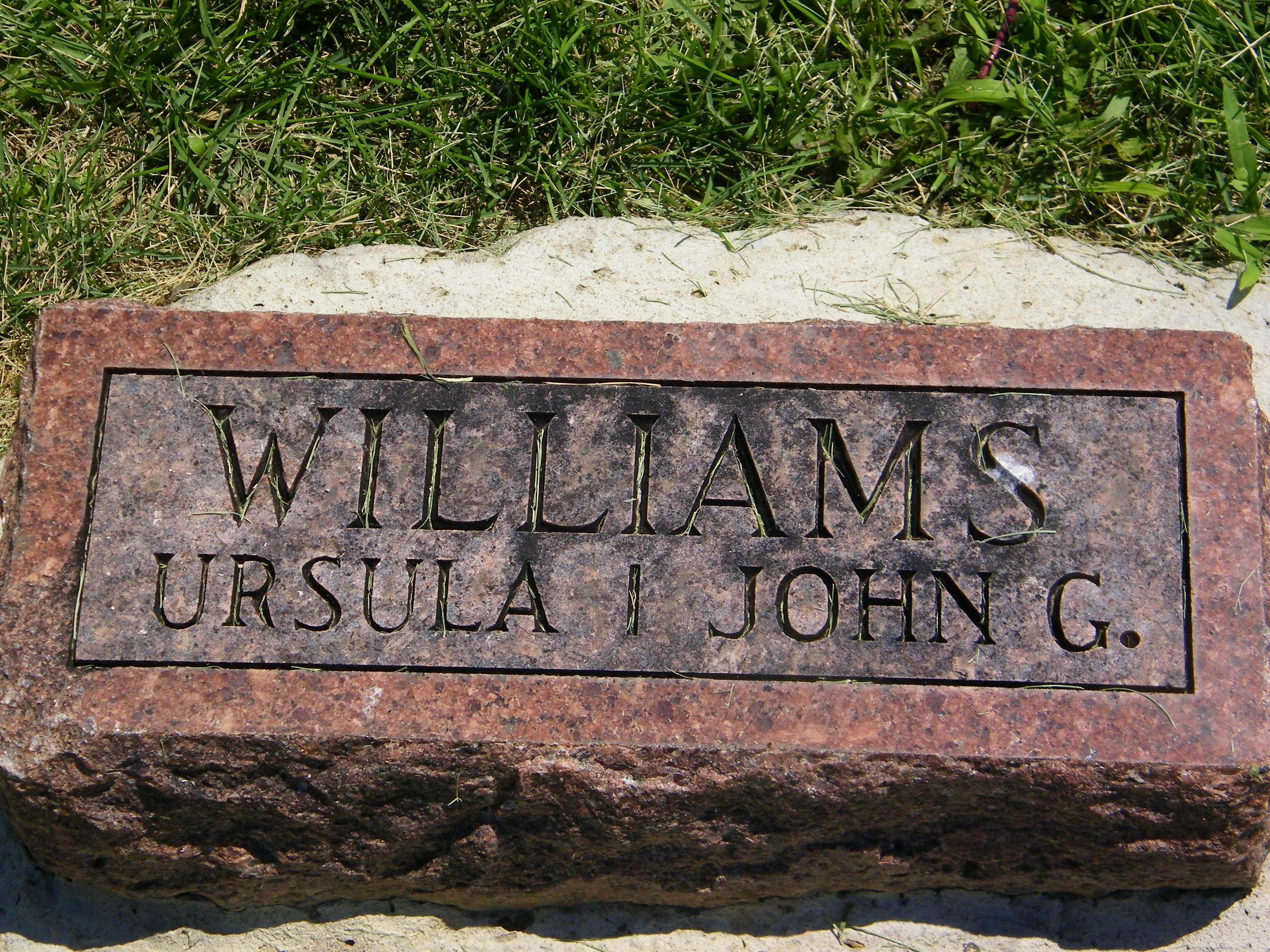 John G Williams