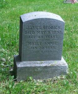 James A Reddick
