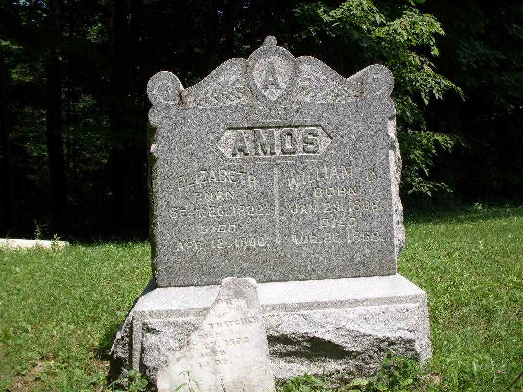 Elizabeth Amos
