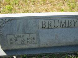 Robert Eldridge Brumby