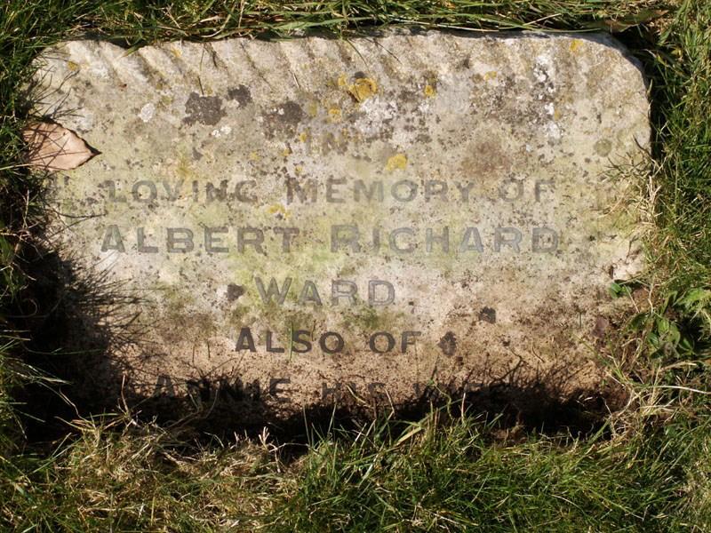 Harry Albert Ward
