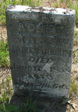 Margaret Cook Adams