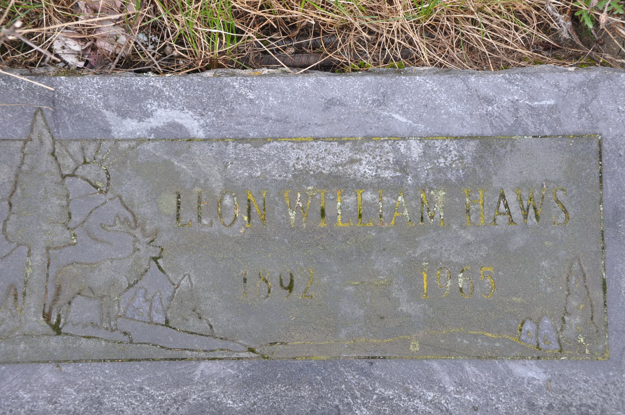 William Wesley Haws