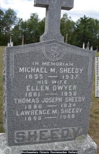 Michael E Sheedy