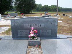Walter B Purvis