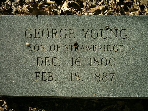 George P Young