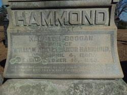 Hampton Hammond Boggan