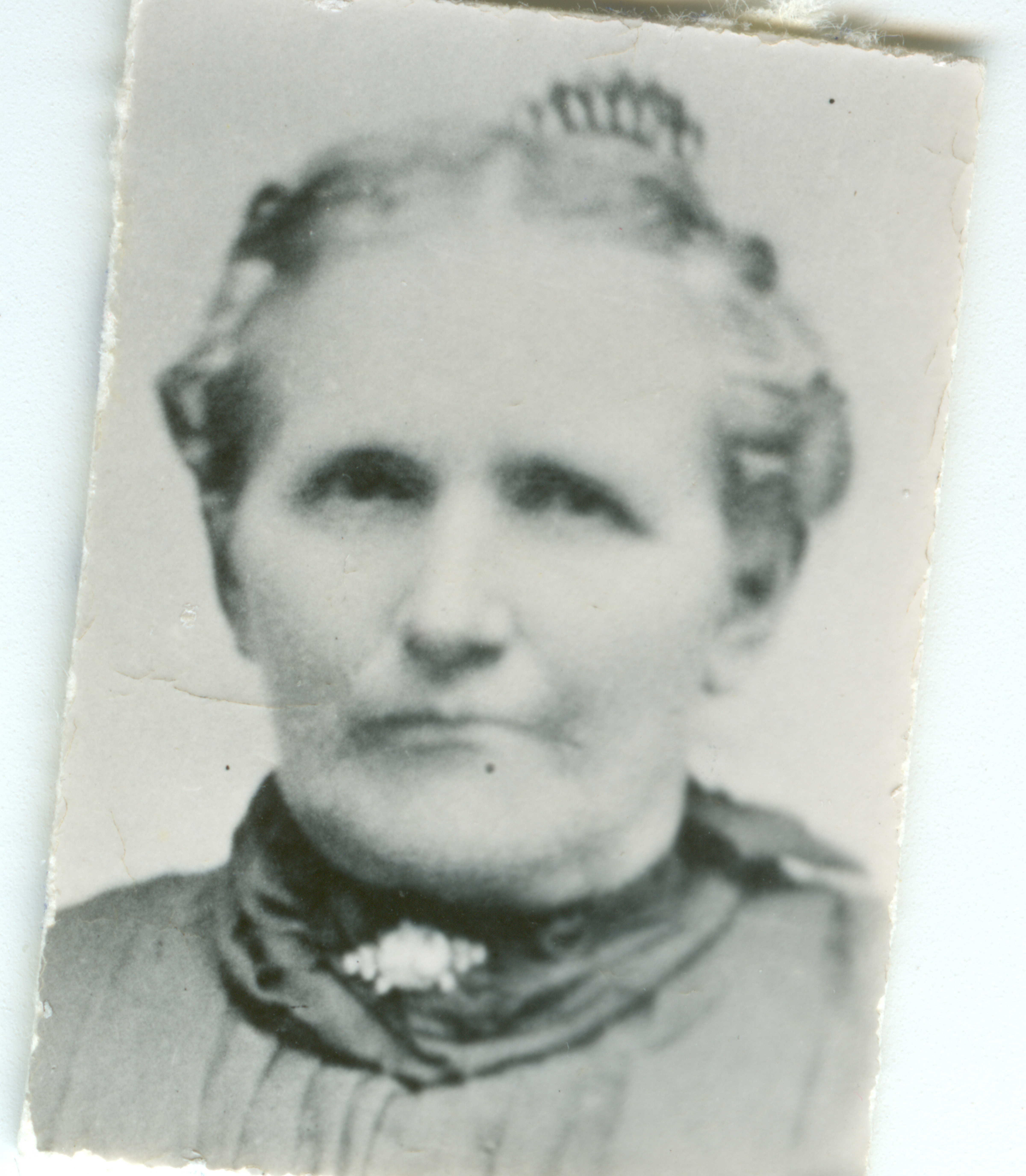 Harriet Bailey