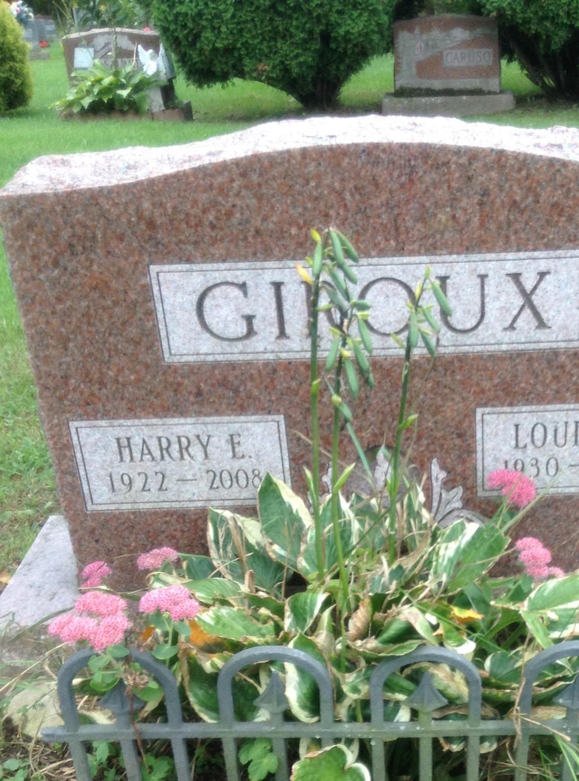 Exerine Giroux