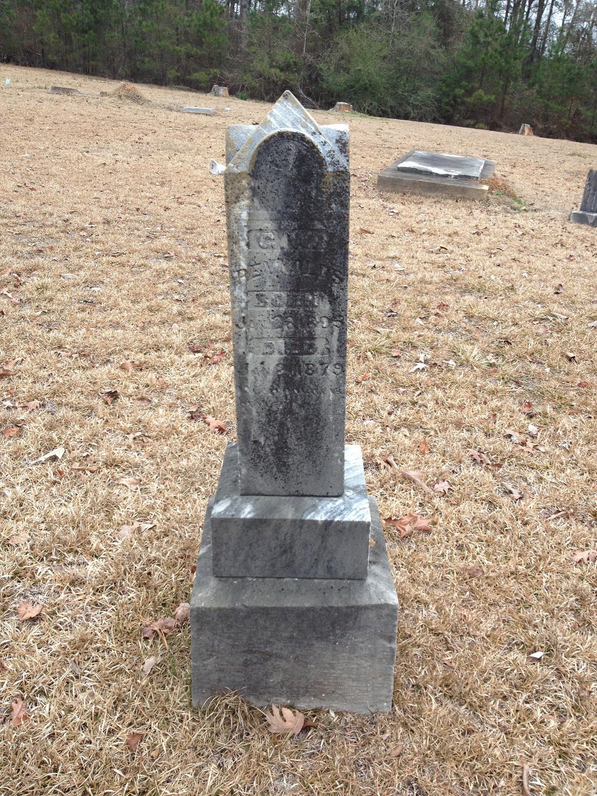 George Washington Reynolds