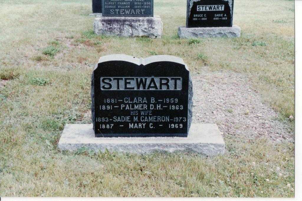 Palmer Dwight Stewart