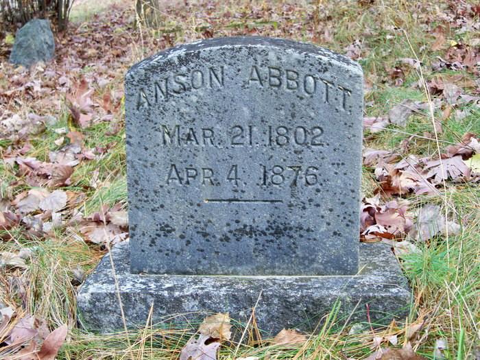 Anson L Abbott