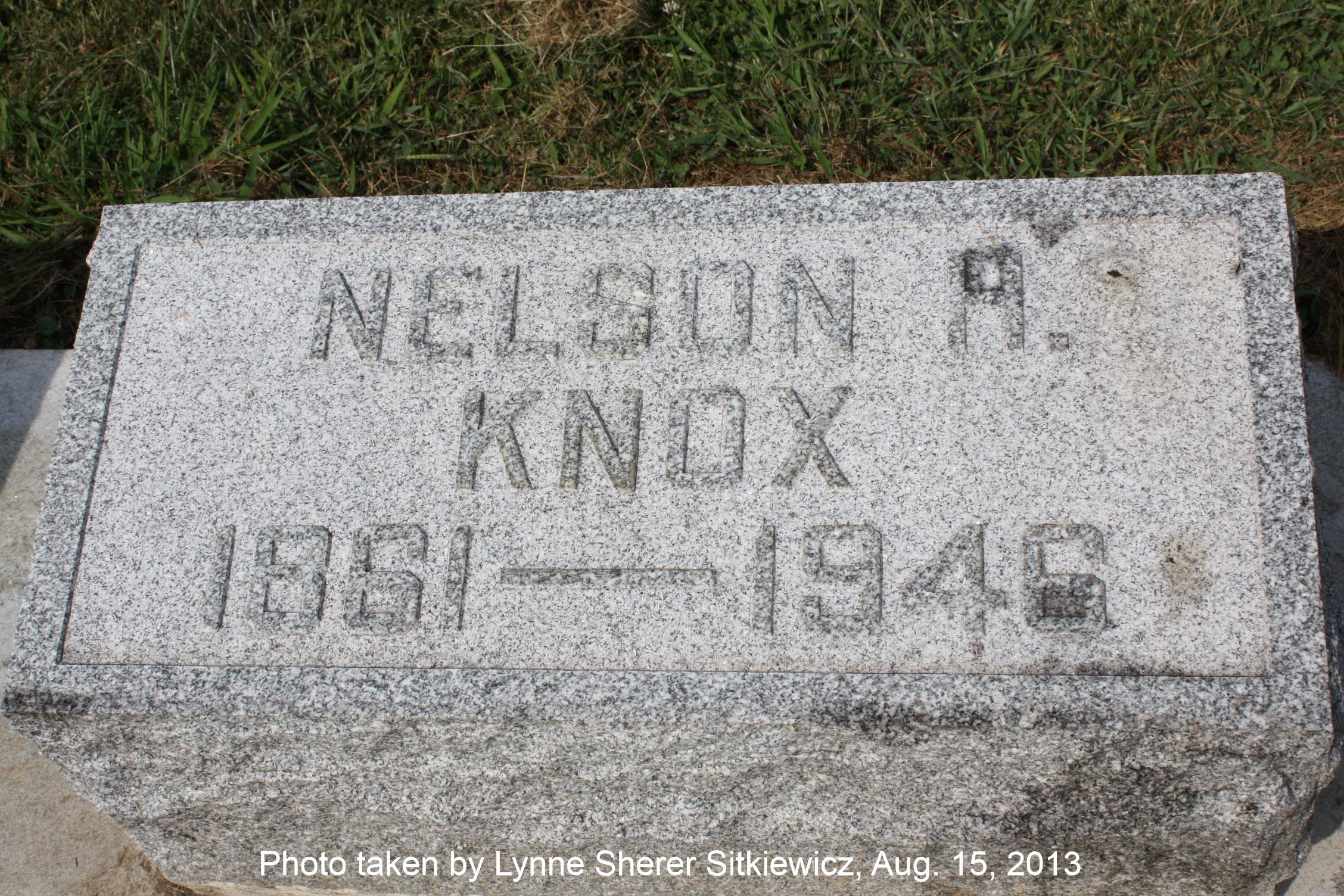 Nelson Knox
