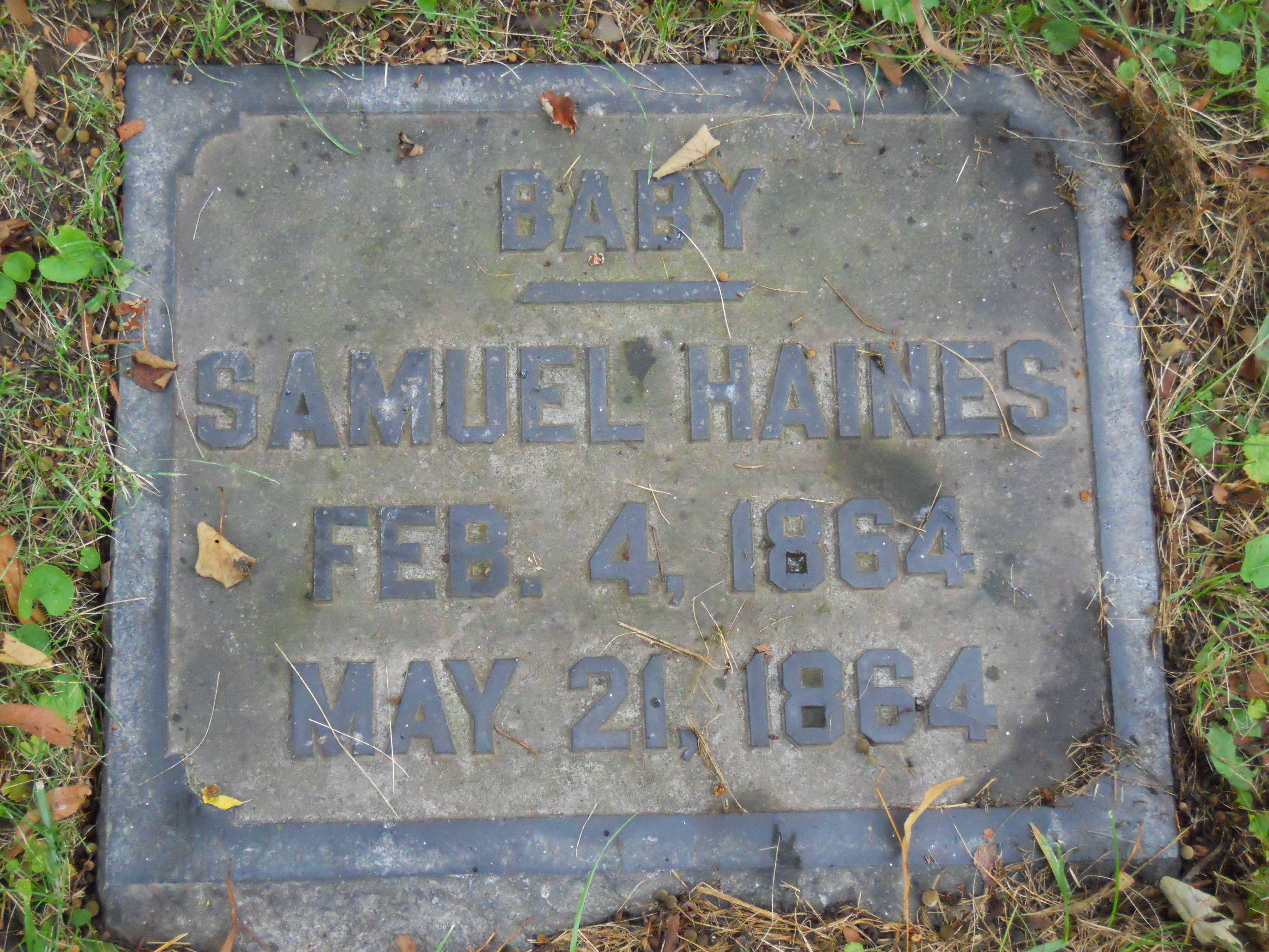 Samuel A Haines