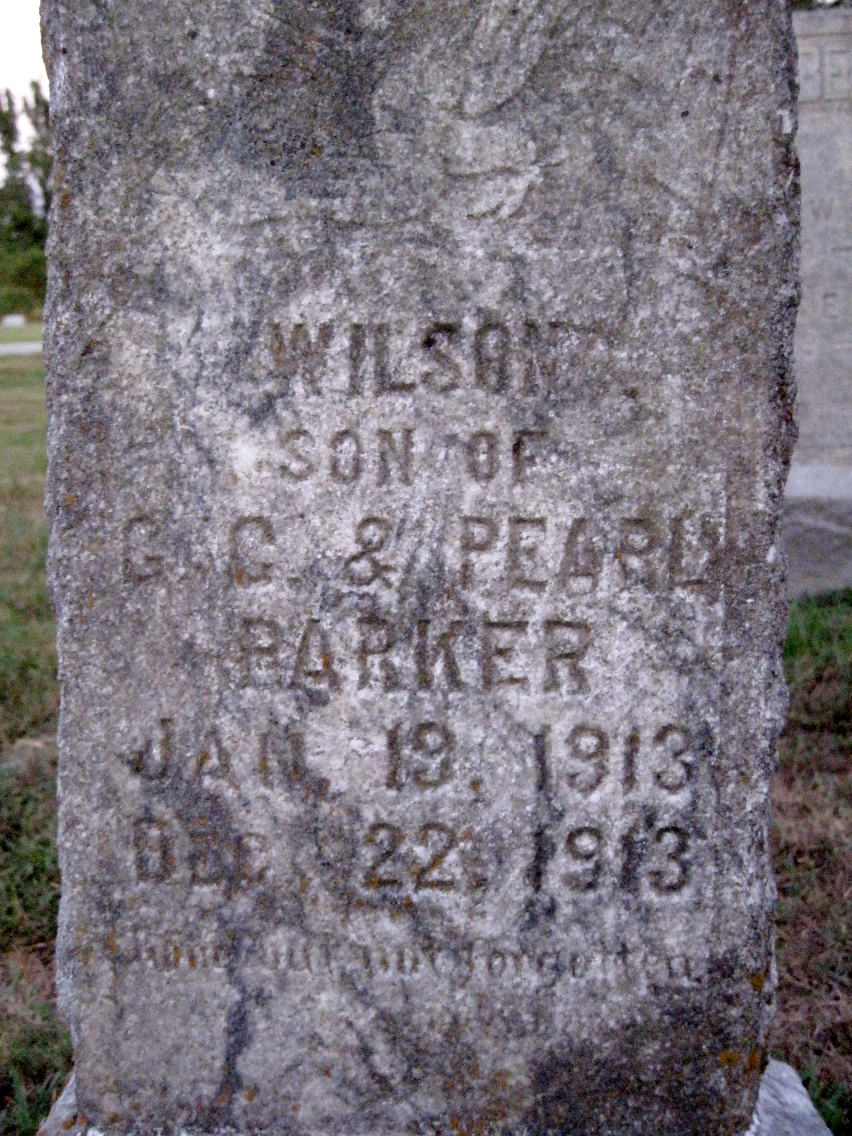 Mary Wilson Parker