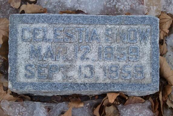 Celestia Snow