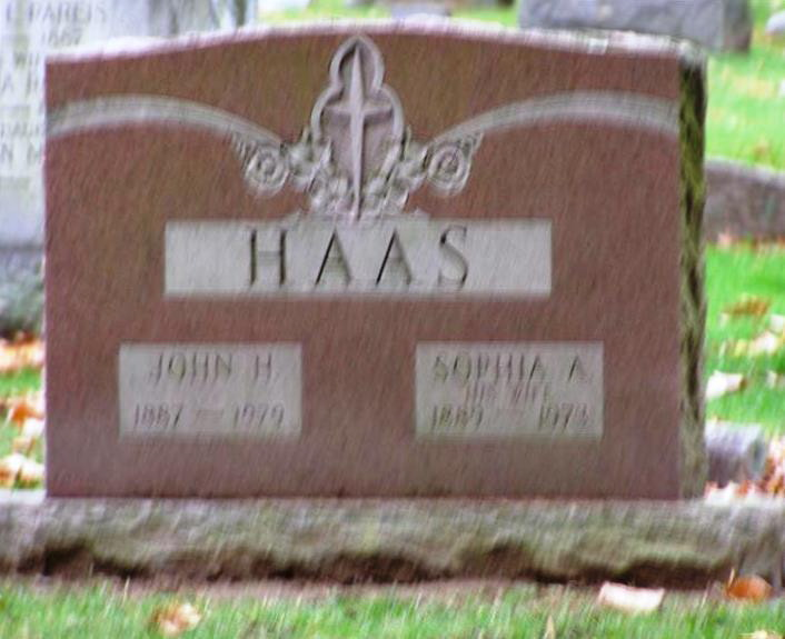 Herman Johannes Haas