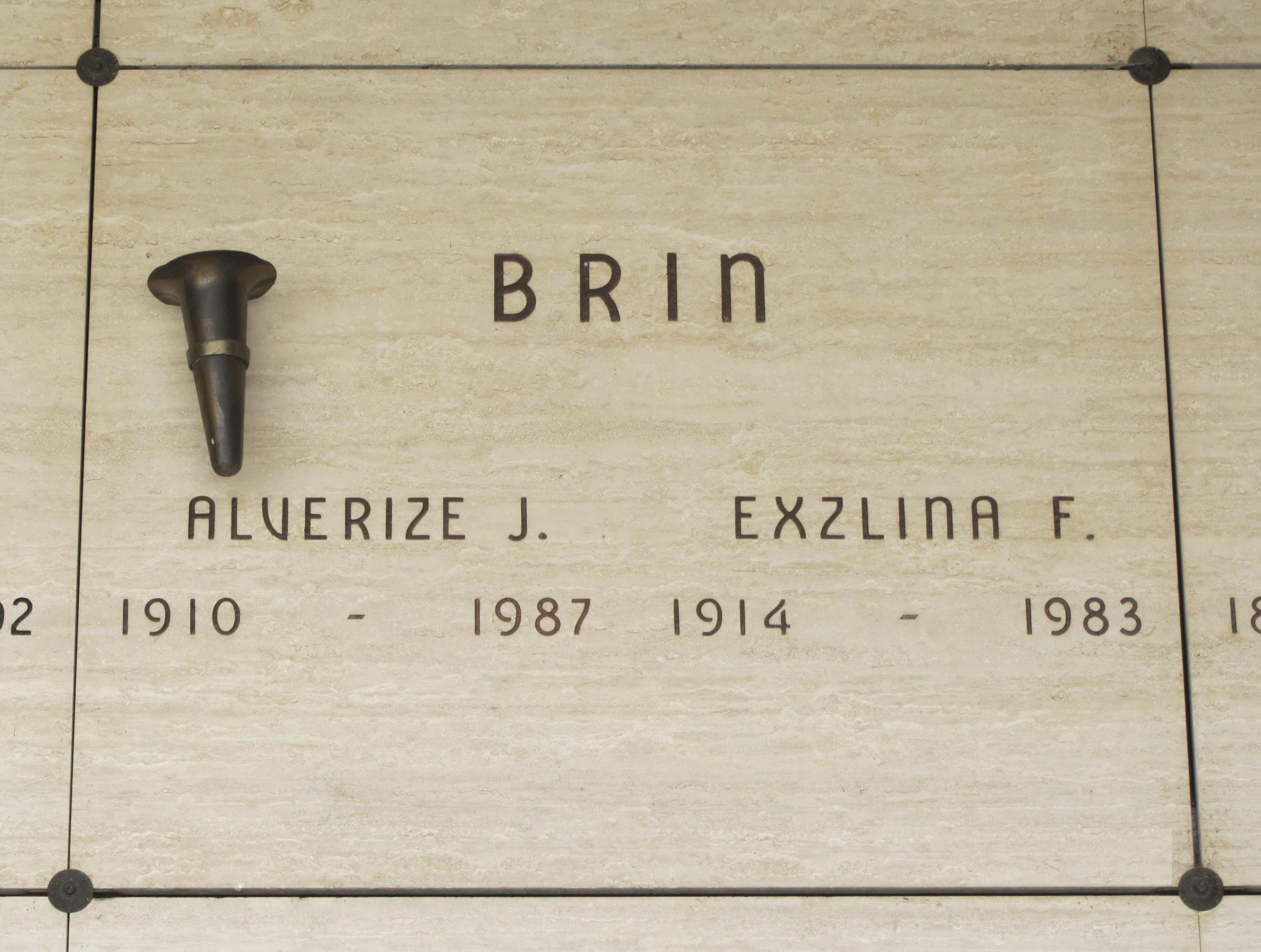 John Brin