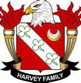 Experience Harvey