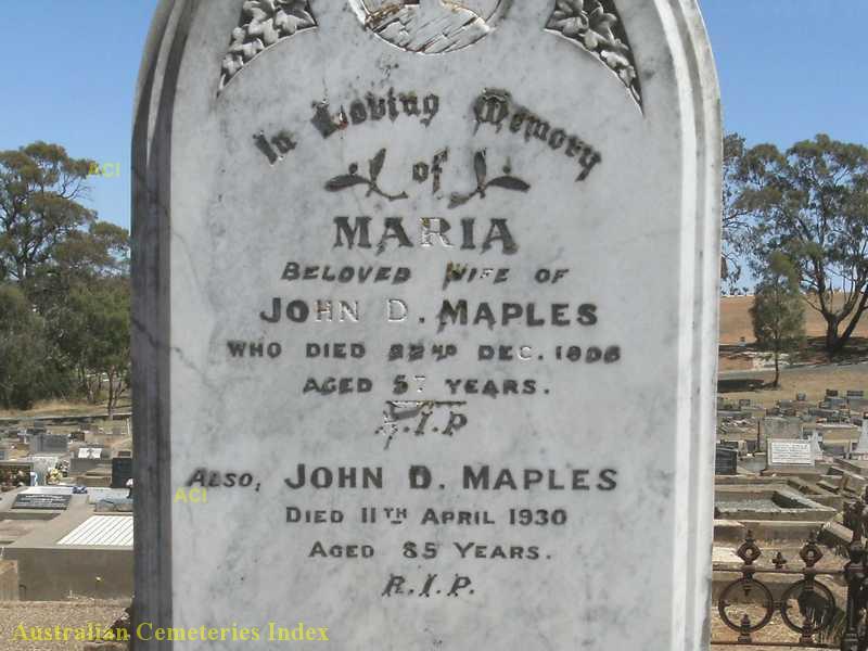 John David Maples