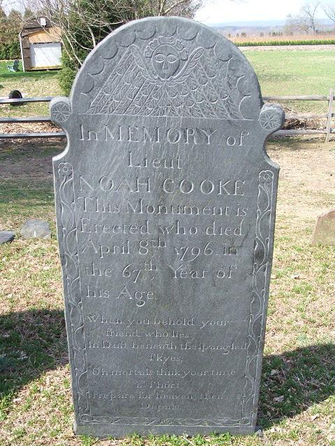 Noah Cook