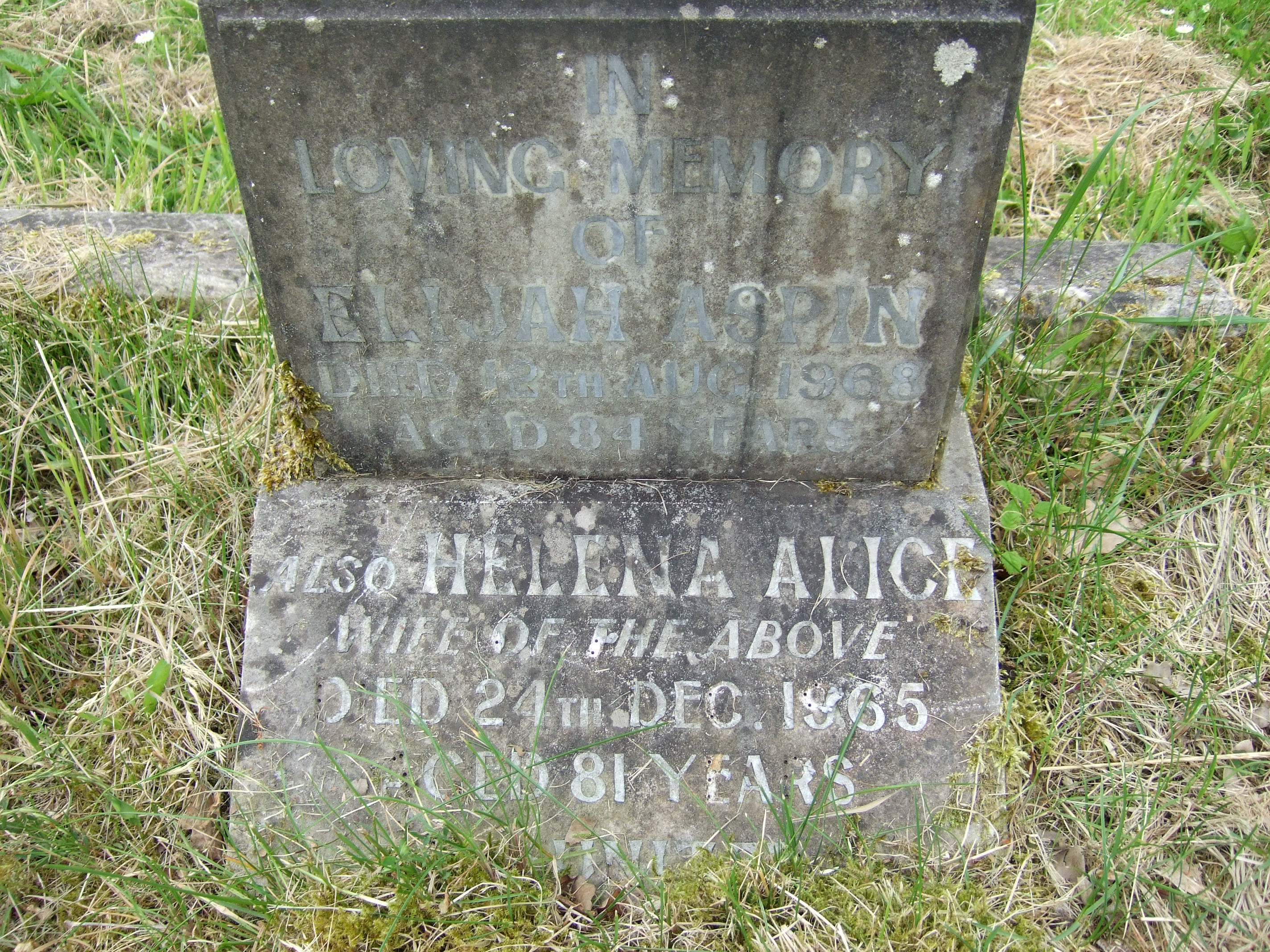Alice Kenyon