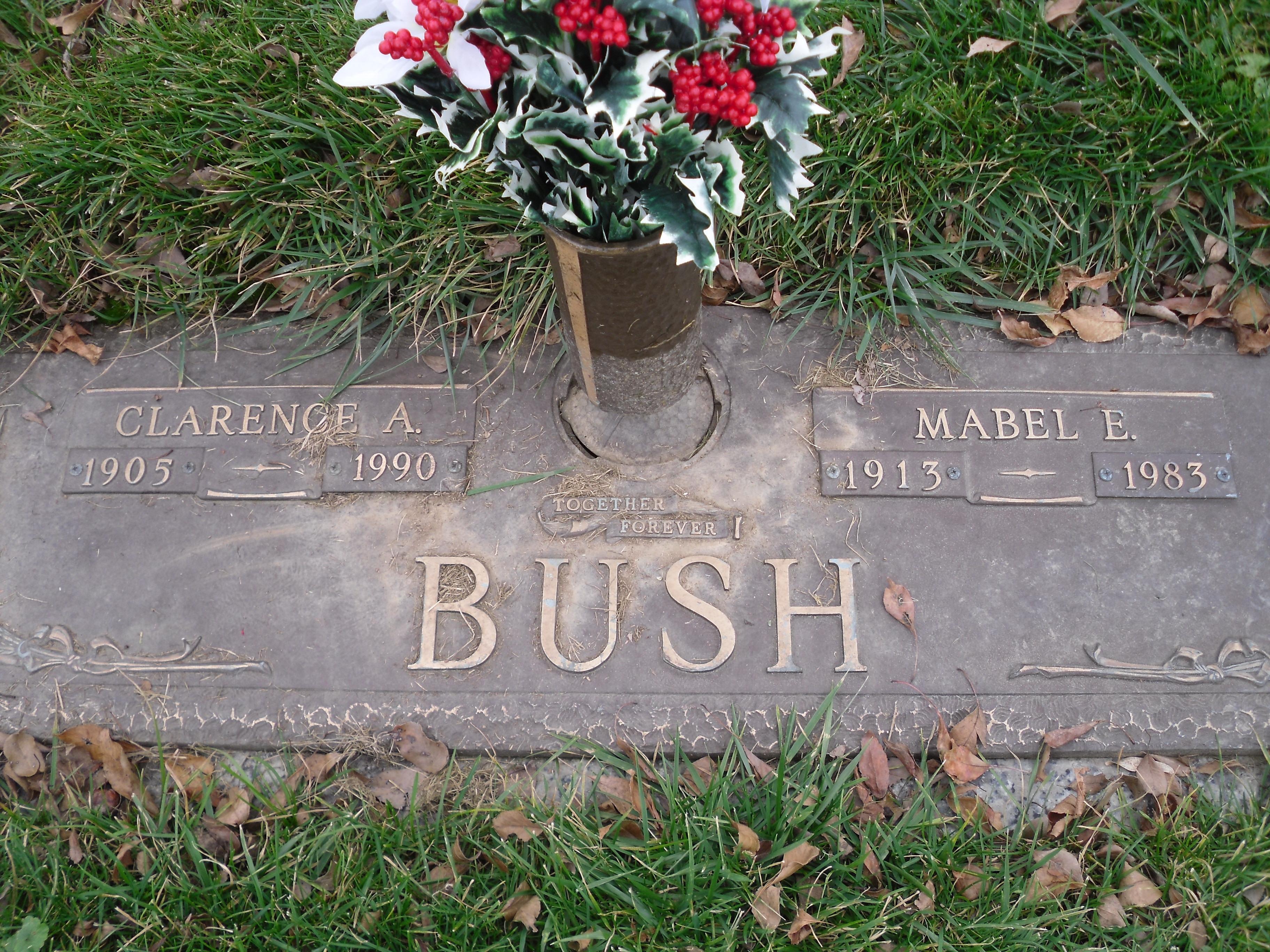 Alpheus Bush