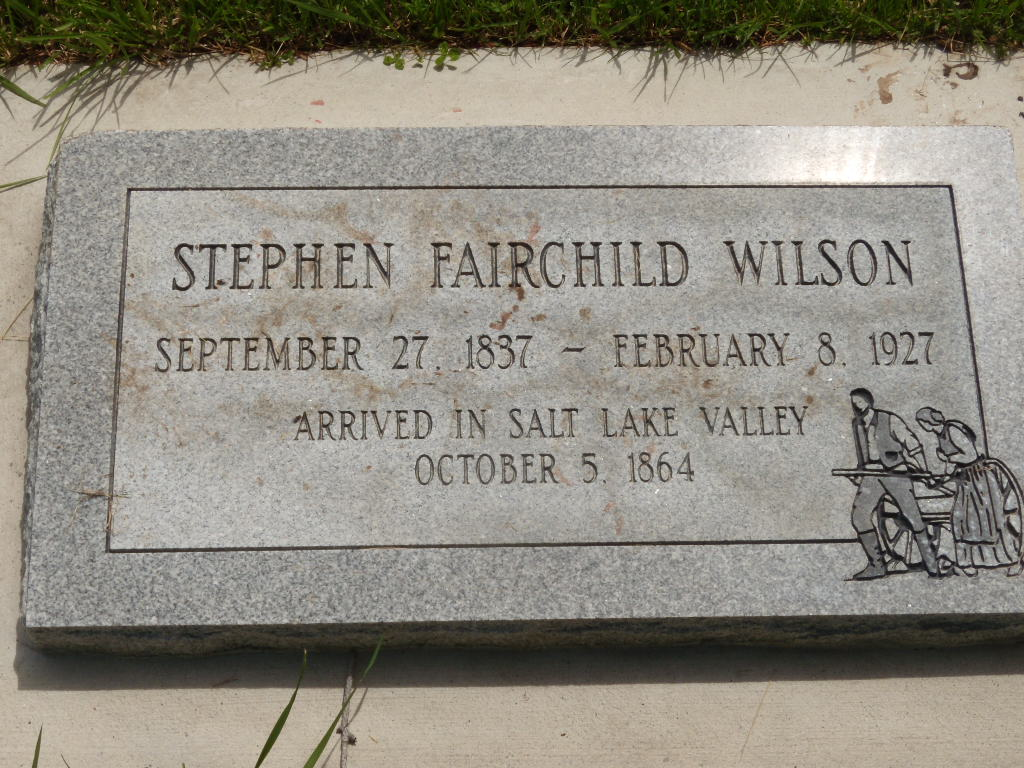 Stephen Fairchild Wilson