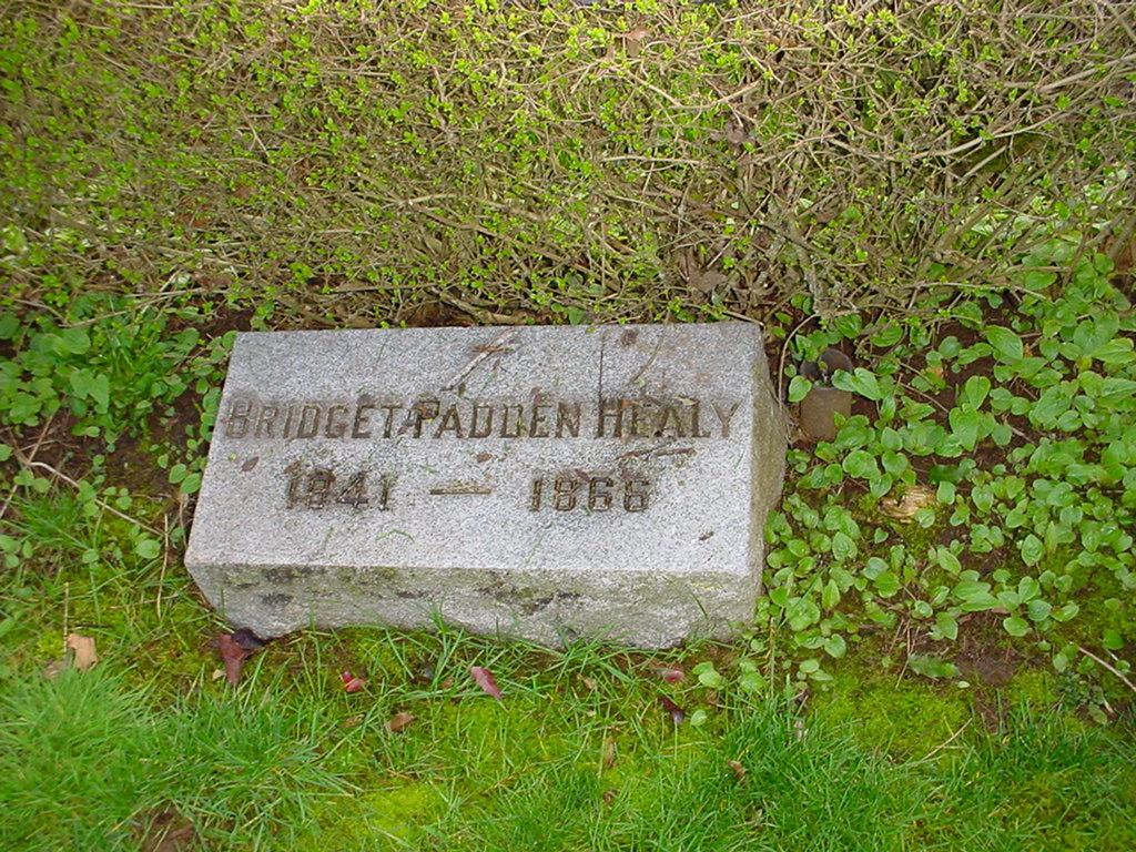 Bridget Padden
