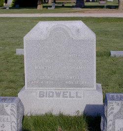 Truman Chamberlain Bidwell