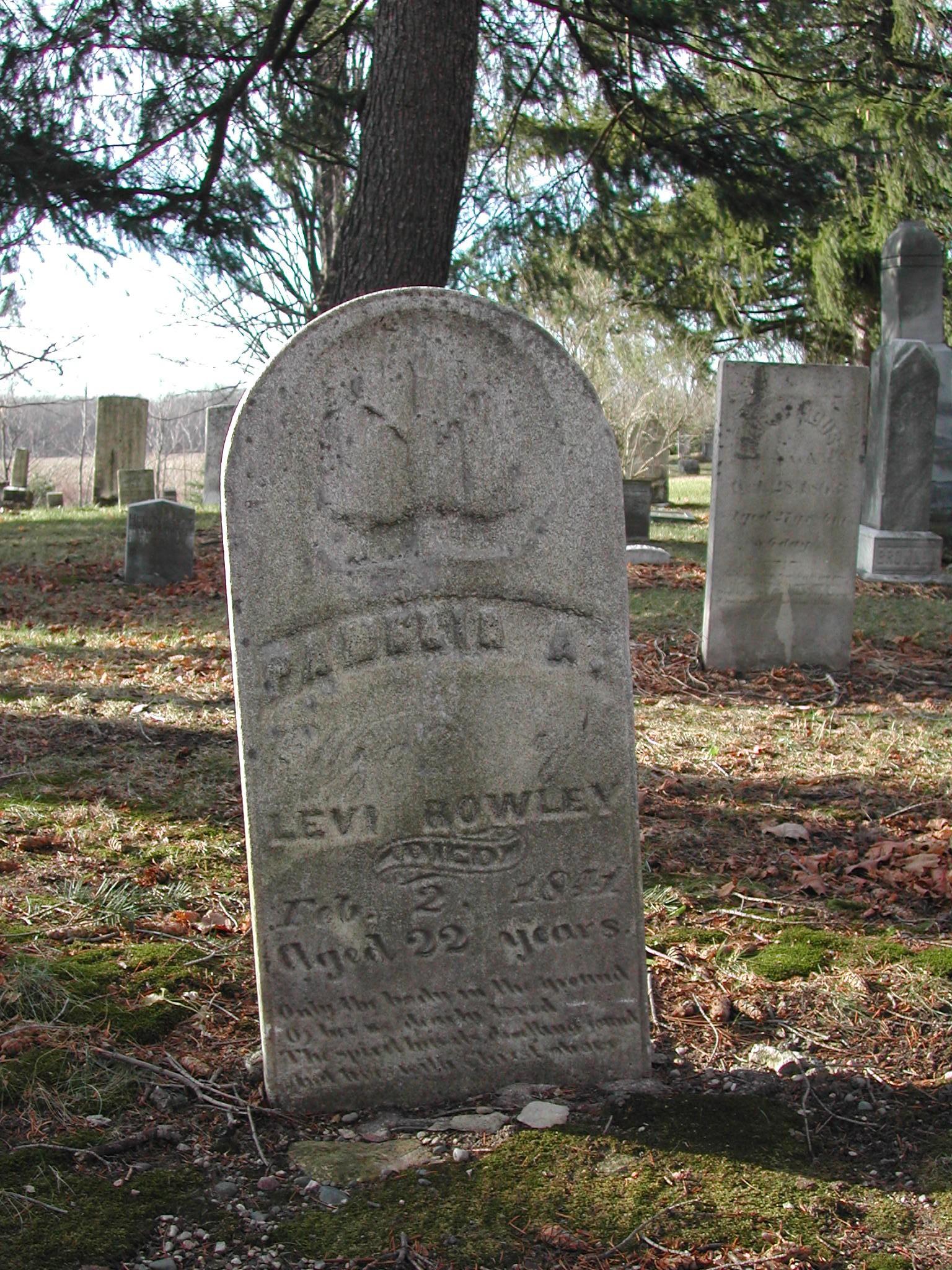 Elizabeth Ann Clute