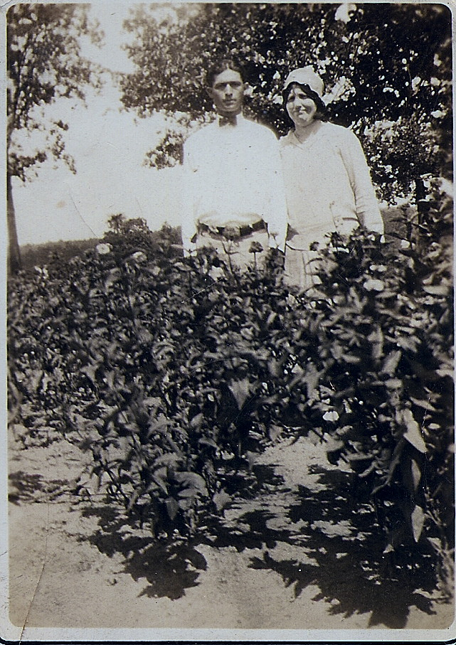 Nellie Brimer