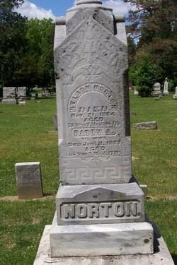 Nelson Ira Norton