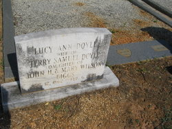 Terry Doyle
