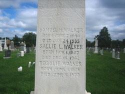 Samuel Hamilton Walker