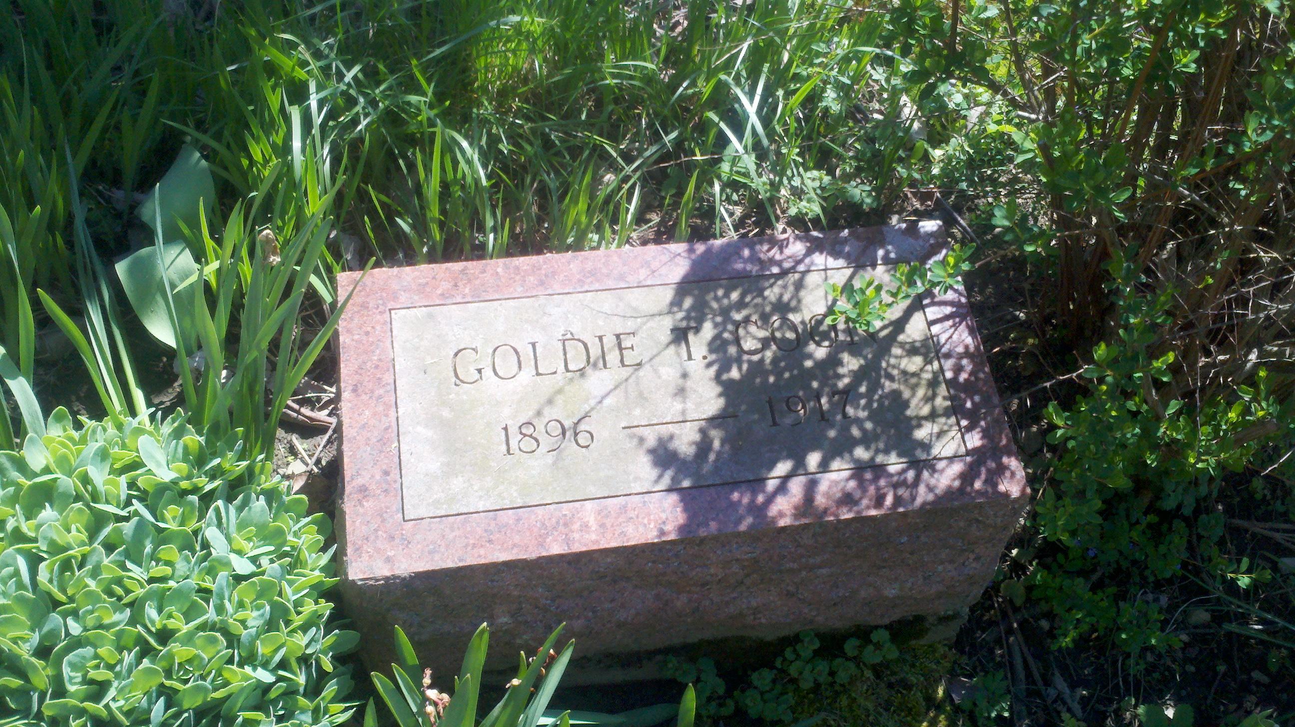 Goldie Taylor