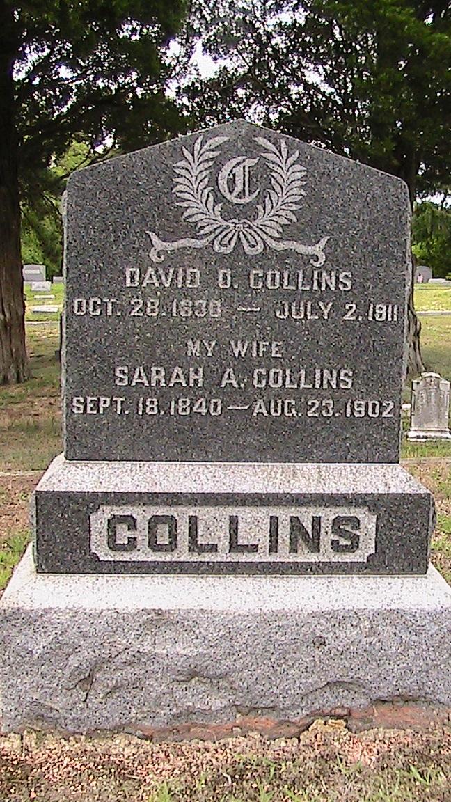 David D Collins